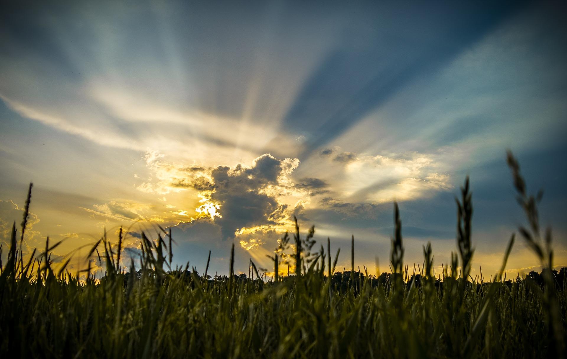 zaświecił dla mnie słońce